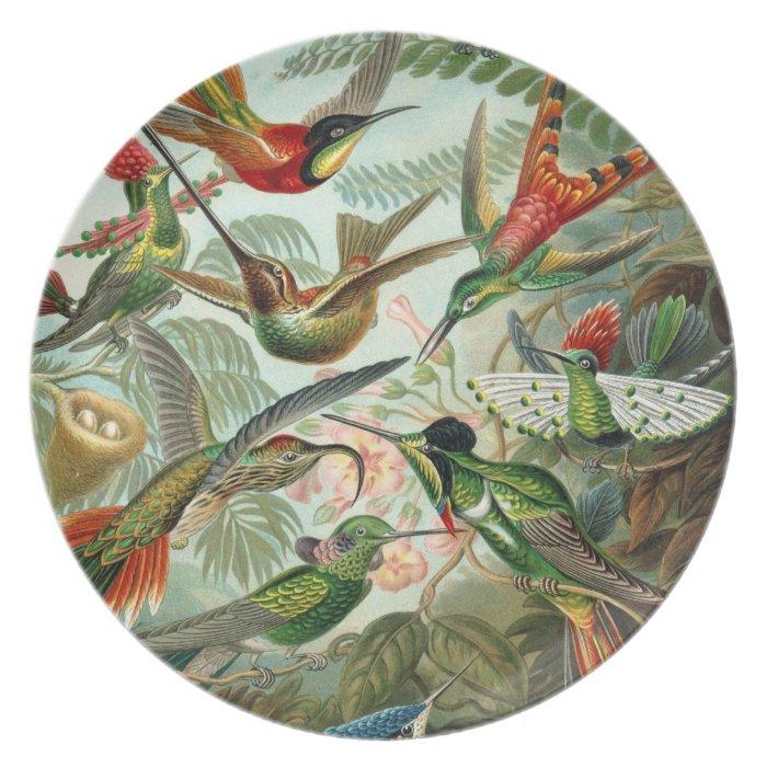 Haeckel Vintage Hummingbirds Illustration Melamine Plate