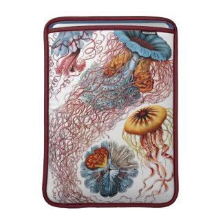 Haeckel Vintage Jellyfish MacBook Air Sleeve