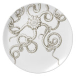 Haeckel - vintage nature party plate
