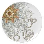 Haeckel - vintage nature plates