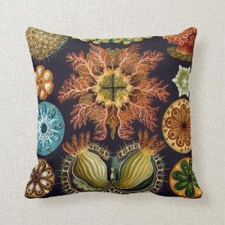 Haeckel Vintage Scientific Illustration Pillow