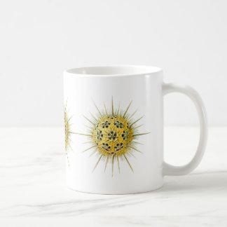 Haeckeliana Coffee Mug