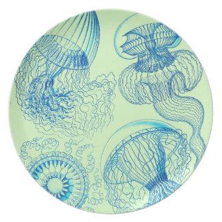 Haeckel's Leptomedusae Dinner Plate
