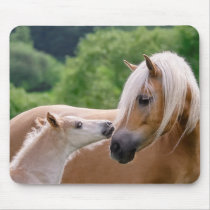 Haflinger Cute Horses Foal and Mom Cuddling Kiss - Mouse Pad