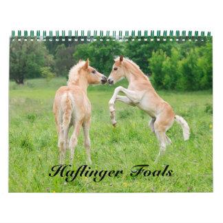 Haflinger Foals 2016 Calendar
