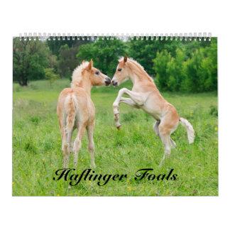 Haflinger Foals 2017  size large Calendar