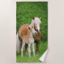 Haflinger Horse Cute Baby Foal Kiss Mum Pony Photo Beach Towel