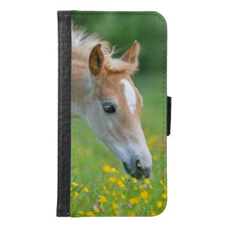 Haflinger horse cute foal Animal Photo - Wallet Phone Case For Samsung Galaxy S6