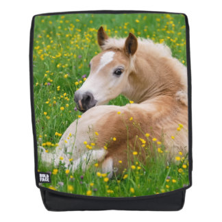 Haflinger Horse Cute Foal in a Flowerbed  Boldface Backpack