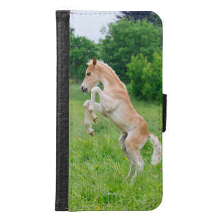Haflinger horse foal rearing Animal Photo - Samsung Galaxy S6 Wallet Case