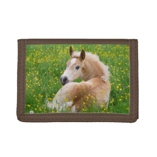 Haflinger Horse Foal Resting in a Flowerbed, Purse Trifold Wallet
