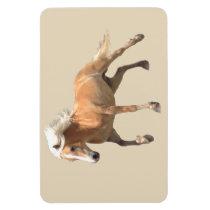 Haflinger Horse Magnet. Magnet