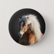 Haflinger Horse Pinback Button