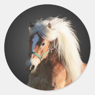 Haflinger Horse Classic Round Sticker