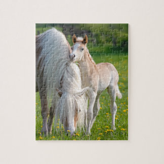 Haflinger Horses Cute Baby Foal With Mum Photo * Jigsaw Puzzle