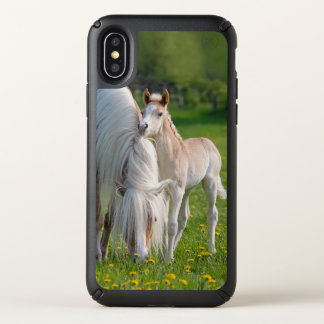 Haflinger Horses Cute Baby Foal With Mum Photo - Speck iPhone X Case