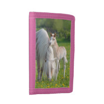 Haflinger Horses Cute Baby Foal With Mum Photo , Trifold Wallet