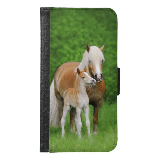Haflinger Horses Cute Foal Animal Photo - Wallet Phone Case For Samsung Galaxy S6