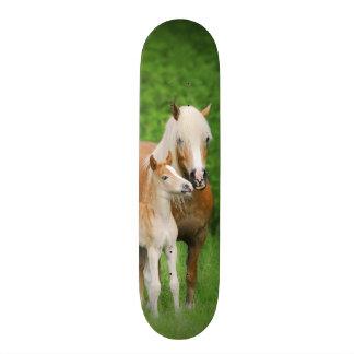 Haflinger Horses Cute Foal Kiss Mum Photo Funny Skateboard Deck