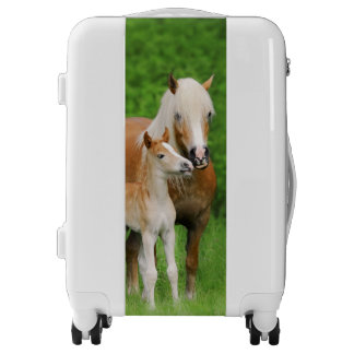 Haflinger Horses Cute Foal Kiss Mum Photo Suitcase Luggage
