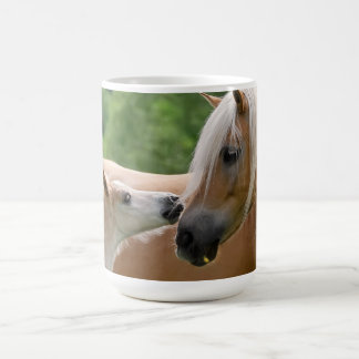 Haflinger Horses Foal and Mare Cuddling, Photo Cup