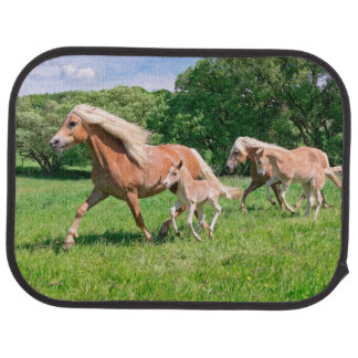 Baby Horse Car Floor Mats Zazzle