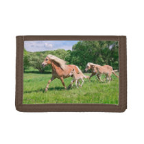 Haflinger Horses with Cute Foals Run Funny Photo - Trifold Wallet