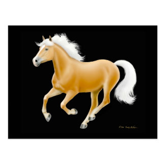 Haflinger Palomino Horse Postcard