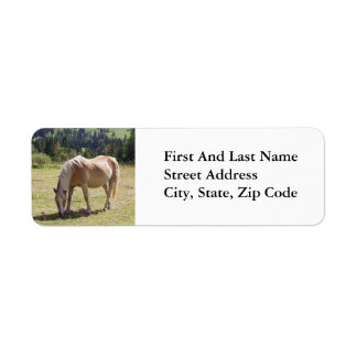Haflinger Palomino Pony in Green Pasture Photo Label