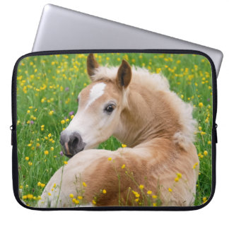 Haflinger Pony Horse Cute Foal in Flowerbed Photo Computer Sleeve