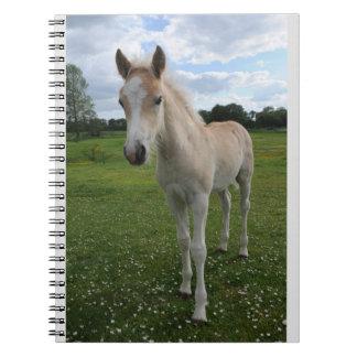 Haflinger Pony (Rare Breed) Spiral Notebook