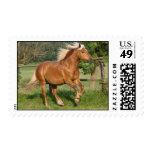 Haflinger postage