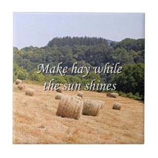 Haga el heno mientras que el sol brilla las balas azulejo cuadrado pequeño