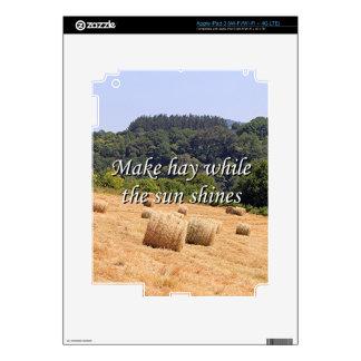 Haga el heno mientras que el sol brilla las balas iPad 3 pegatinas skins