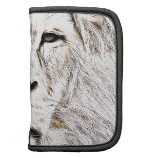 Haga frente a la cara Löwen-Gesicht Face de Lion Organizador