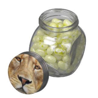 Haga que su propia jalea hincha los tarros jarras de cristal jelly bely