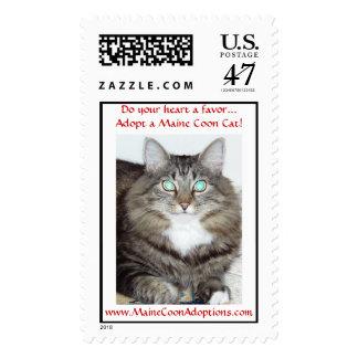 ¡Haga su corazón que un favor… adopta un gato de Sello Postal