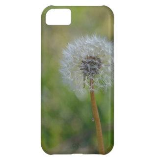 Haga su mejor wish~ funda para iPhone 5C