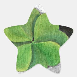 Haga su propia suerte pegatina en forma de estrella