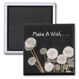 Haga un deseo imán de nevera
