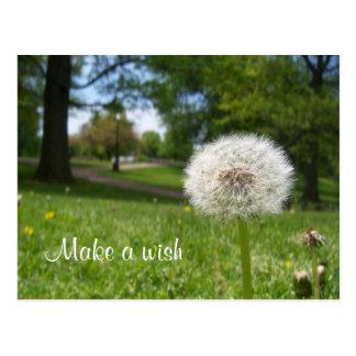 Haga un deseo postal