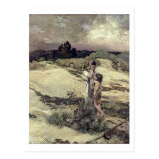 Hagar and Ishmael Postcard