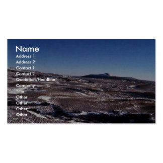 Hagemeister Island interior 1986 Double-Sided Standard Business Cards (Pack Of 100)