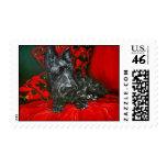 Haggis the Scottish Terrier Postage Stamps