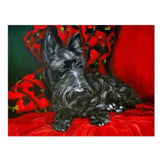 Haggis the Scottish Terrier Postcard