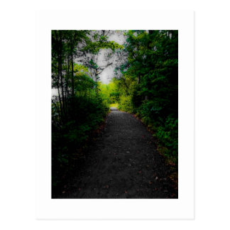 Hagley Park Postcard