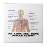 Hago miro como tengo fiebre de dengue (la anatomía teja  ceramica