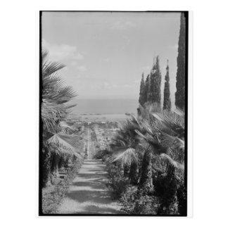Haifa - del monte Carmelo, los años 20 Postal