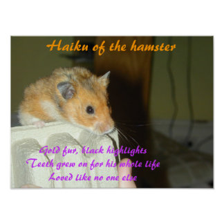 Haiku of the Hamster 1 Poster