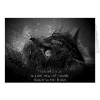 Haiku profundo de los pensamientos del gato tarjeta de felicitación